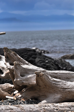 Point-No-Point, Vancouver Island