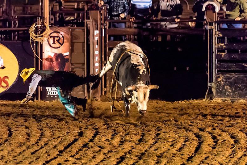big-cedar-rodeo-283.jpg