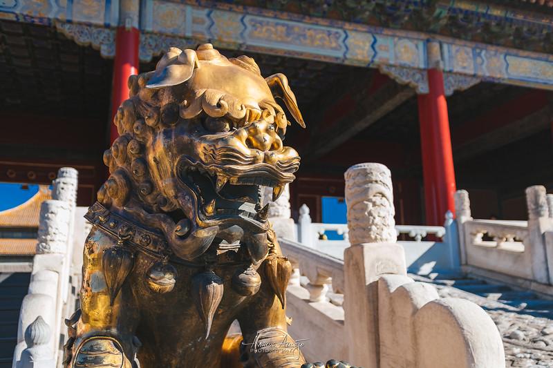 BeijingMarch2019-84.jpg