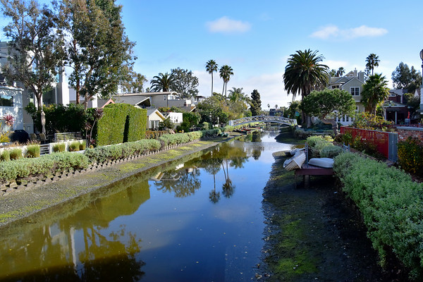 The Venice Canals, Venice, CA (January 2019)