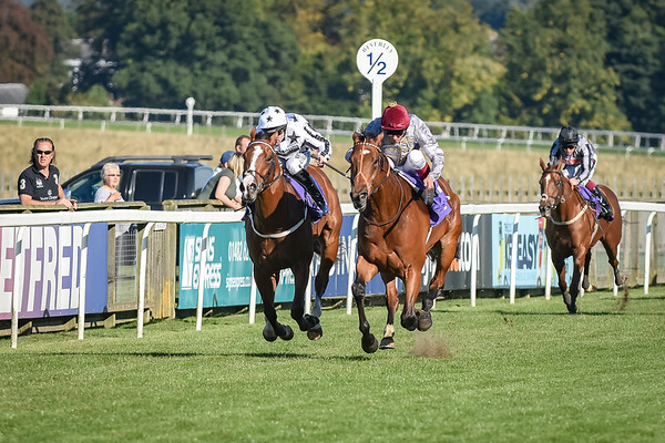 The Racing UK Anywhere Available Now Maiden Stakes