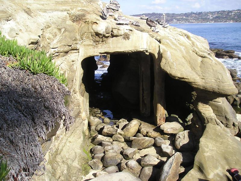 San Diego 2009 010.JPG