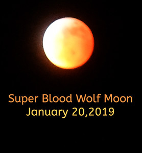 Super Blood Wolf Moon and a partial Solar Eclipse