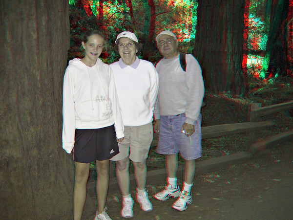 Dipsea Trail Hike - IN 3D (anaglyph)