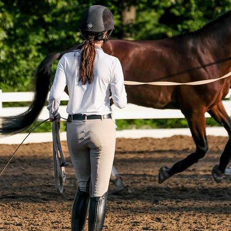 Germantown Horseshow June 2017