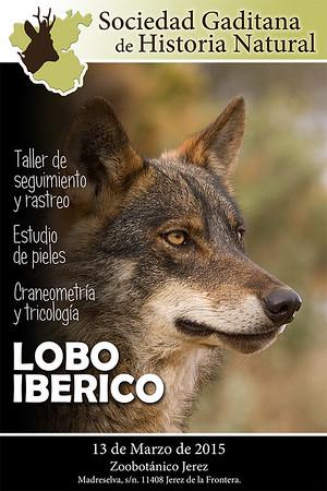 I Taller Lobo
