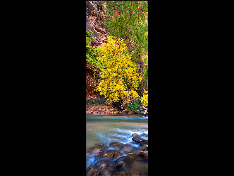 Virgin Colors-Virgin River, Utah.jpg