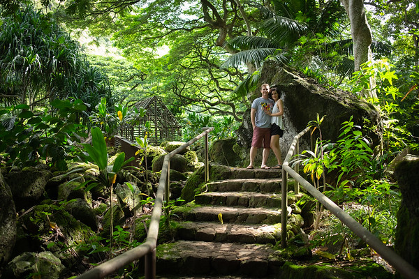 Hawaii All