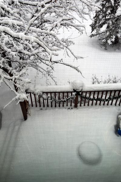 2-16-snow-day-4730.jpg