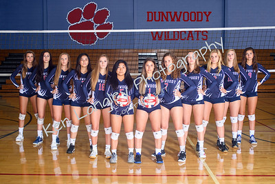 2017 Volleycats