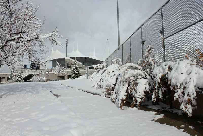 Snowy_Morning_11_10_2012_3313.JPG