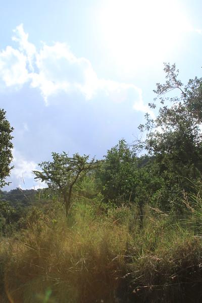 Kenya Part2 '15 003.JPG