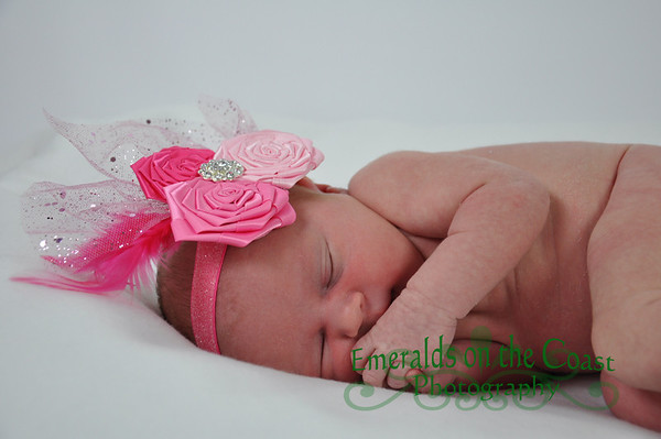 Gracelyn's Newborn Pics