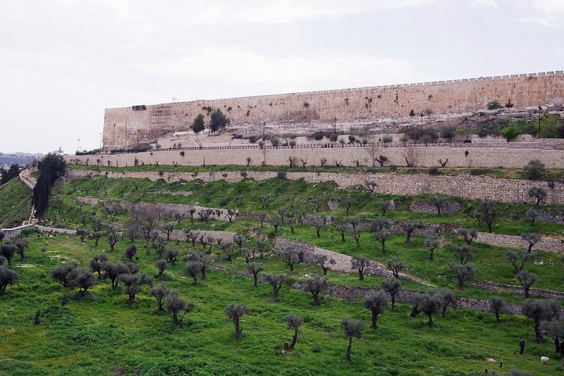 Jerusalem Wall #1.jpg