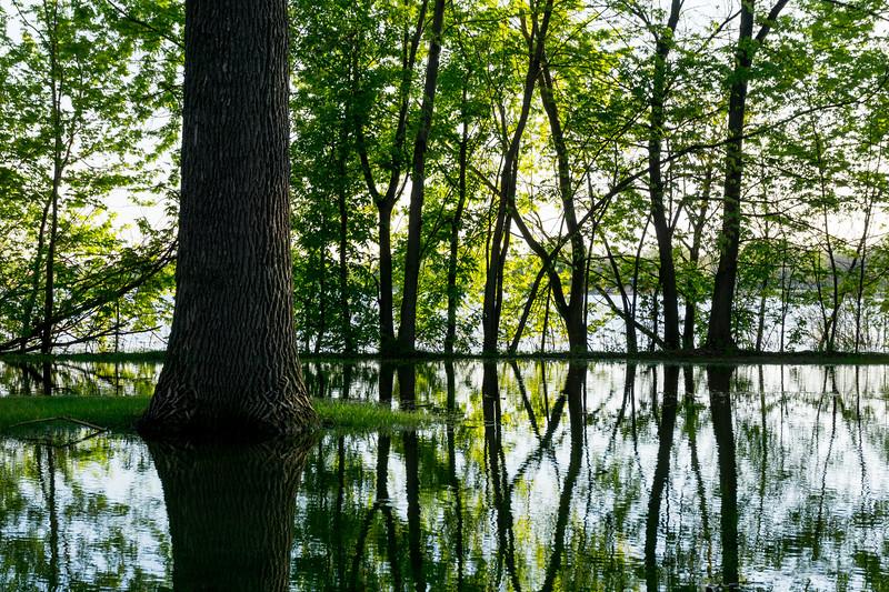 Lake Nokomis in a Wet Spring