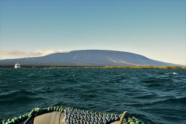 Galapagos Day 8 - Fenandina Island