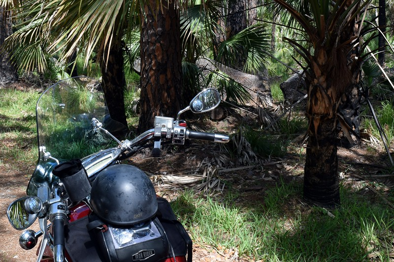 038a Riding the wilderness 4-26-17.jpg