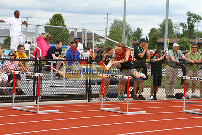 D1 Boys 300 Hurdles - 2013 MHSAA LP Track and Field Finals