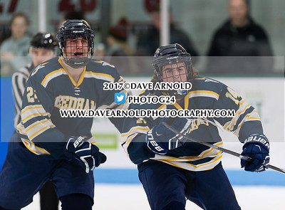 2/15/2017 - Boys Varsity Hockey - Needham vs Wellesley
