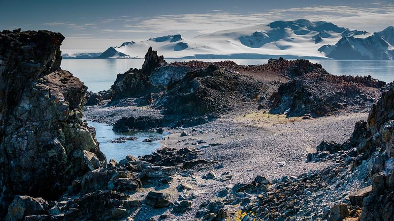 _MG_4567_20170119_Antarctica.jpg