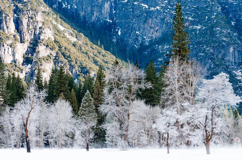 Yosemite Snow.jpg