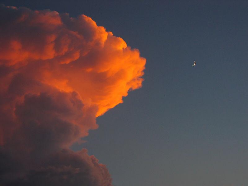 Evening Splendor.jpg