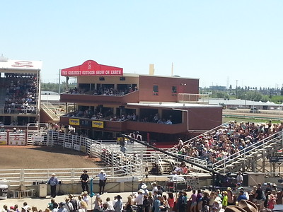 """Stampede """"The Greatest Show on Earth"""""""
