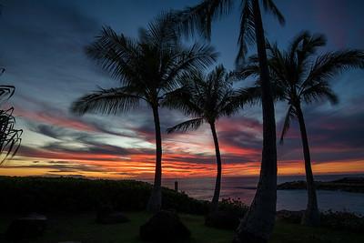 Hawaii (February)