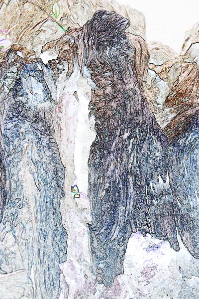 Cwmcarn Scenic Drive Log~4995-2ge,