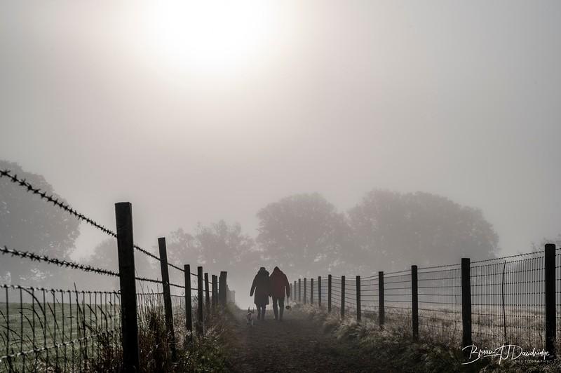 Hassocks in the mist-5452.jpg