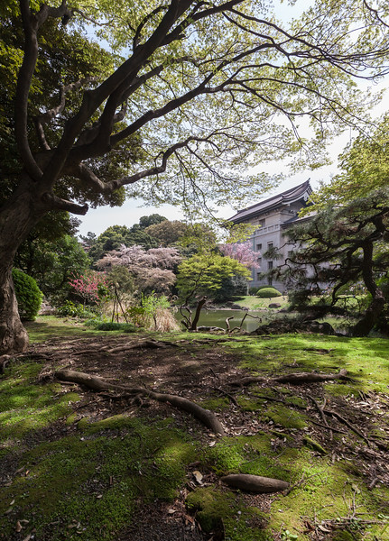 Zen Seclusion