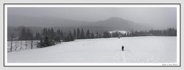 2016-02-24 Raquette Le Montagnard Vallée Bras du Nord (Jean Poirier)