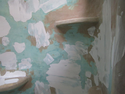 100701-Bathroom&Roof