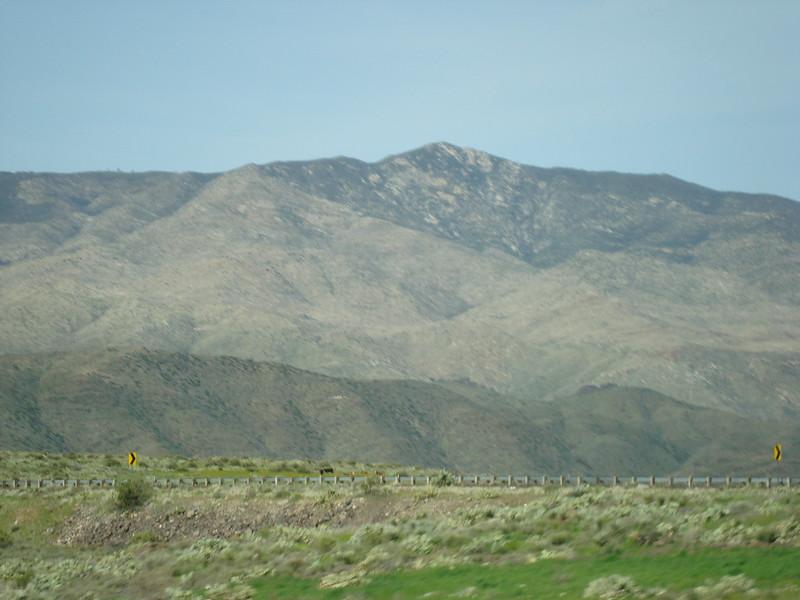 Arizona Feb. 2010 015.JPG