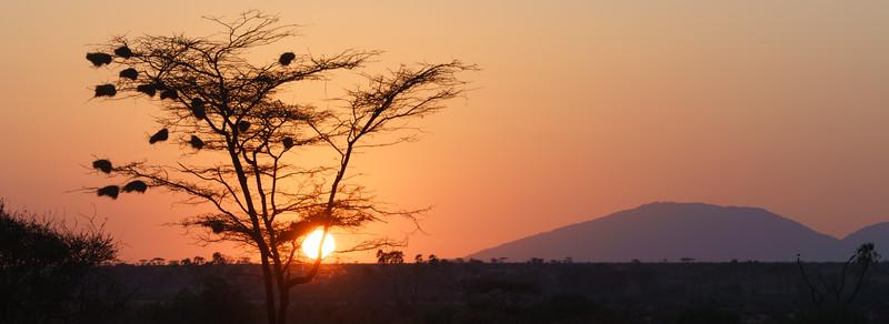 Kenya 2015-02229.jpg