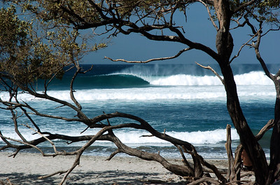 WAVES OF JOY * JOHN LYMAN PHOTOS GREATEST HITS