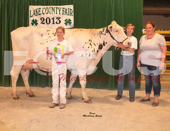 2013 Lake Co. Indiana 4H Auction