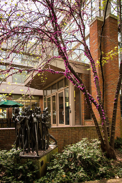Spring at Vanderbilt-20150410-18_08_01-Rajnish Gupta.jpg