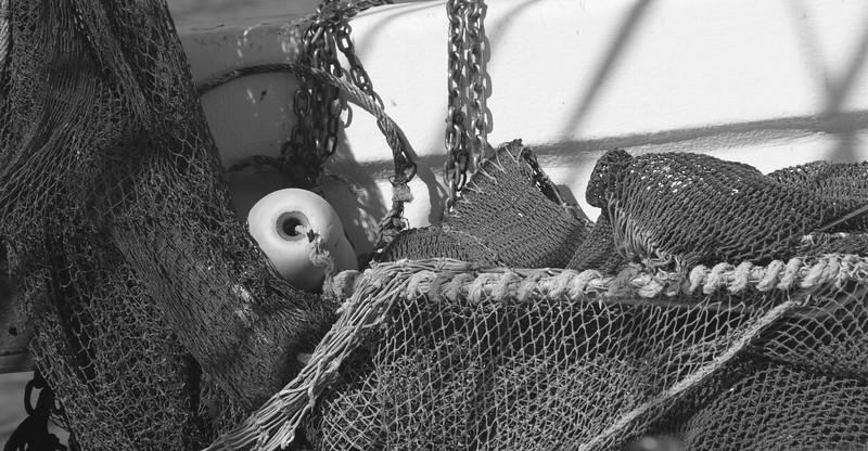 Campaign, Shrimp Boat 067.jpg