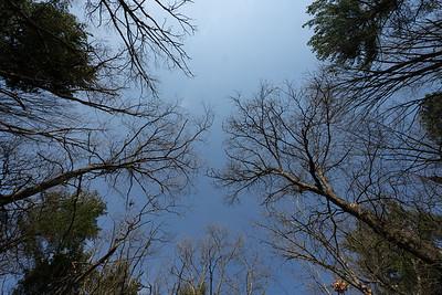 Blue Hills Hike