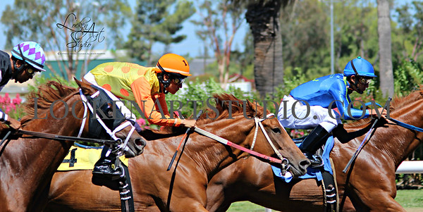 California State Fair Horse Racing 2016