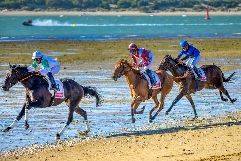 Horse race on the beach, Sanlucar de Barrameda, Spain.