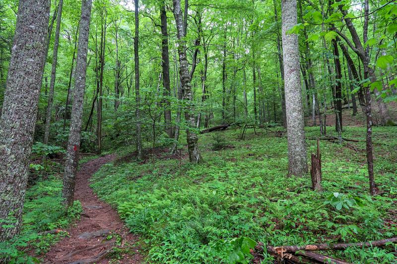 Sleepy Gap Trail -- 2,680'