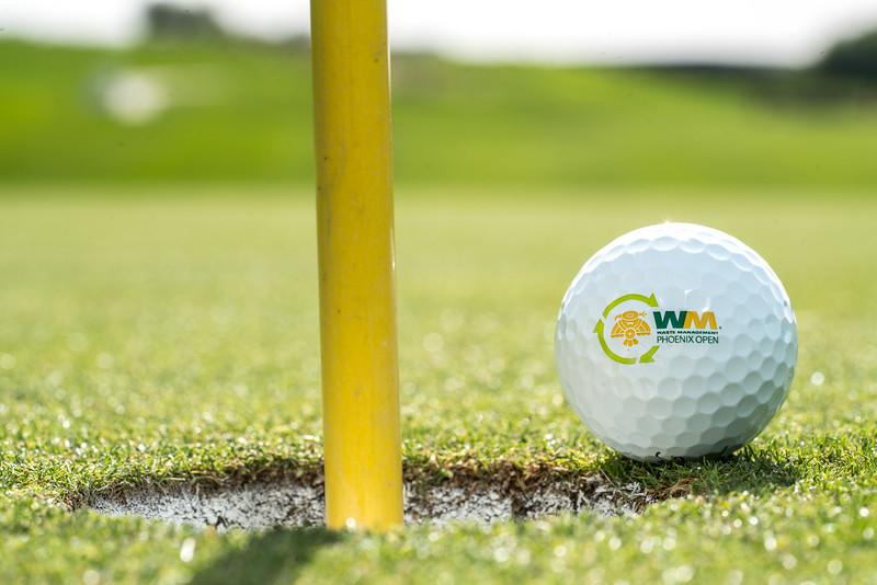 WM Phx Open Ball-21.jpg