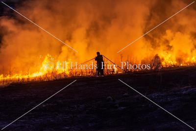 20210306 - City of Mount Juliet - Brush Fire