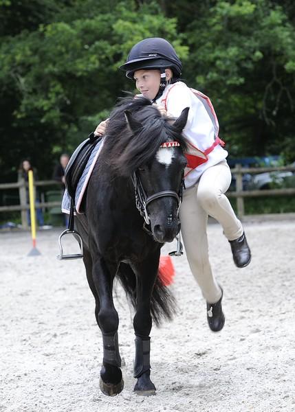 Equestrian (General)