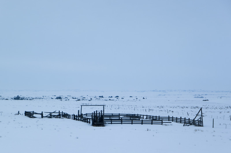 Eastern Montana Corral in Winter