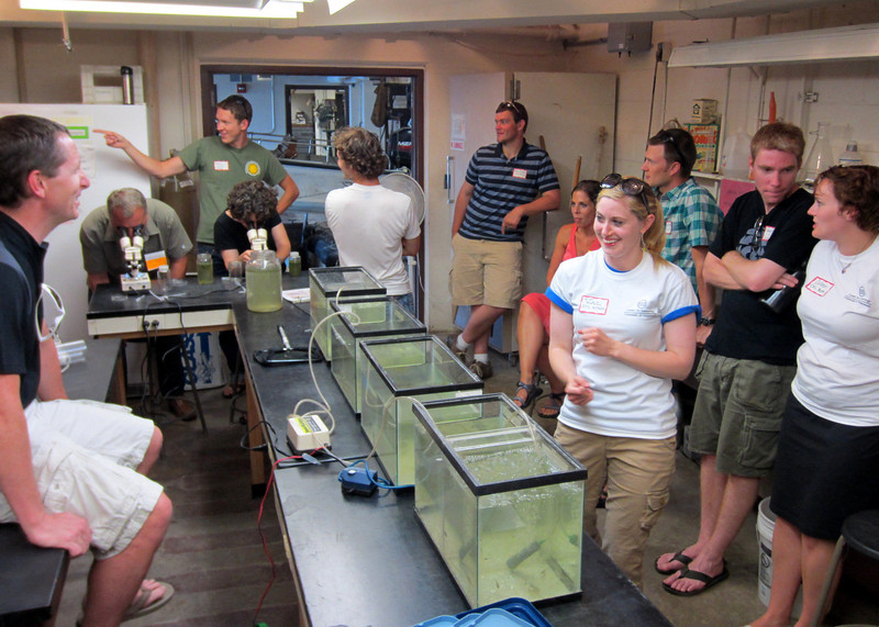 Back in the Wet Lab, CFL staff and students set up aquaria and plankton displays so visitors could get an up close look at the animals that call Madison lakes home.