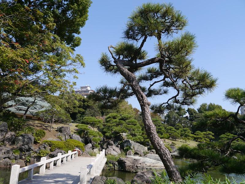 09-Japan2011_2499.JPG
