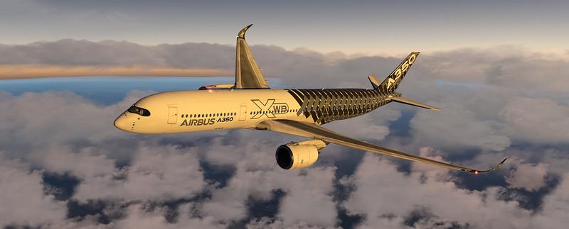 A350_xp11 - 2020-07-24 23.13.22.jpg